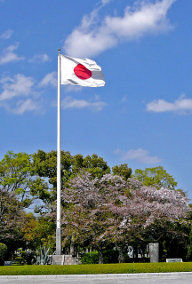 The Japanese Flag