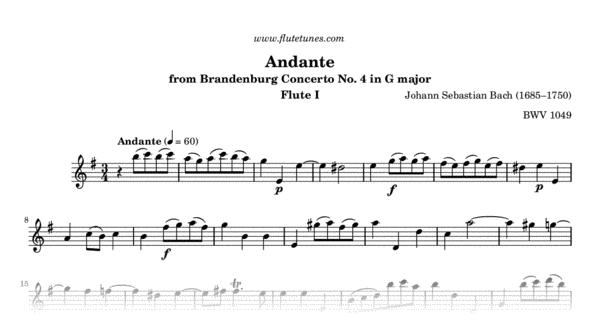 andante from brandenburg concerto no  4 in g major  j s