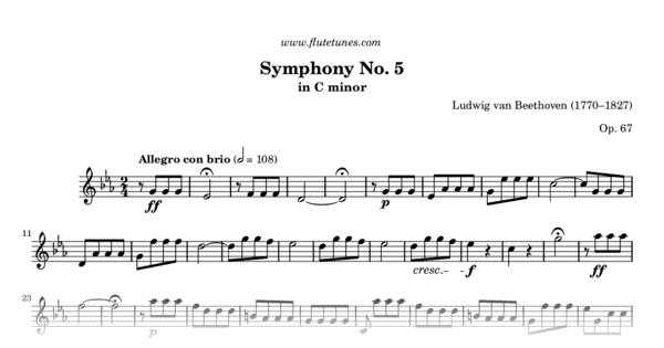 Symphony No 5 L Van Beethoven Free Flute Sheet Music