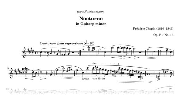 Nocturne No. 20 In C-sharp Minor (F. Chopin)