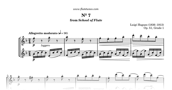 duet no  7 in f major from school of flute  grade 1  l